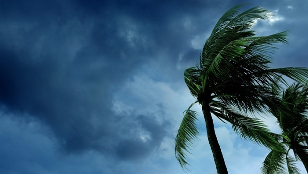 BRG Hurricane Insurance Claims